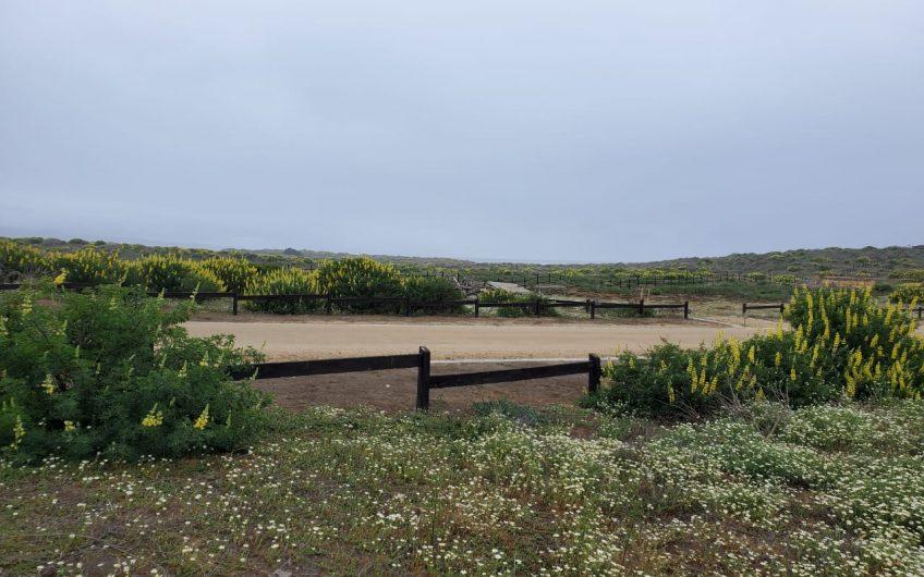 Terreno en Condominio Costa de Lobos, Pichilemu